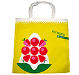 Interested In Promoting Yourselves In An Ecological Manner? Go Green! As Green Petal Ventures To Provide You Natural Bags